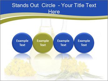 0000083509 PowerPoint Template - Slide 76