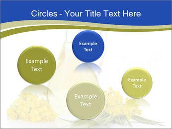 0000083509 PowerPoint Template - Slide 77