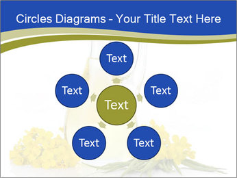 0000083509 PowerPoint Template - Slide 78