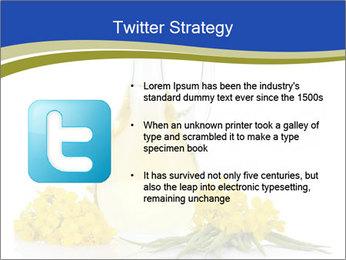 0000083509 PowerPoint Template - Slide 9