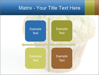 0000083510 PowerPoint Template - Slide 37