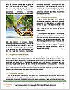 0000083520 Word Templates - Page 4