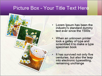 0000083522 PowerPoint Template - Slide 17