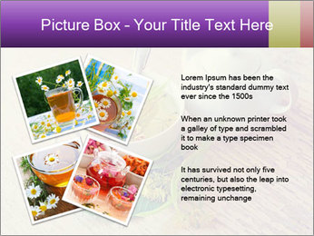 0000083522 PowerPoint Template - Slide 23
