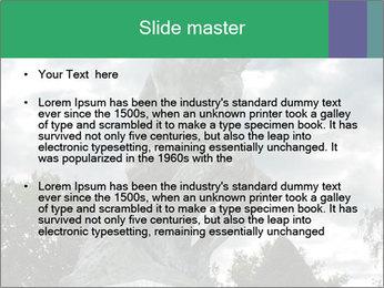 0000083524 PowerPoint Template - Slide 2
