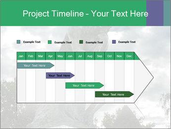 0000083524 PowerPoint Template - Slide 25