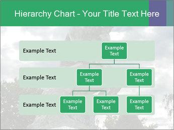 0000083524 PowerPoint Template - Slide 67