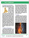 0000083524 Word Template - Page 3