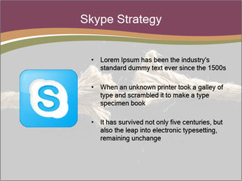 0000083536 PowerPoint Template - Slide 8
