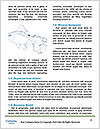 0000083541 Word Template - Page 4