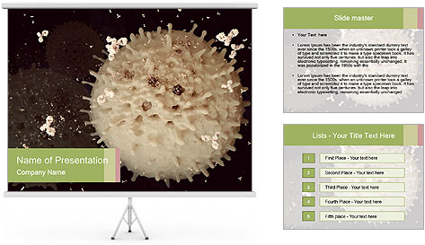 0000083543 PowerPoint Template