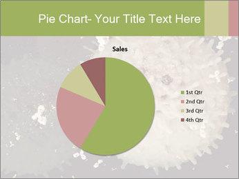 0000083543 PowerPoint Template - Slide 36