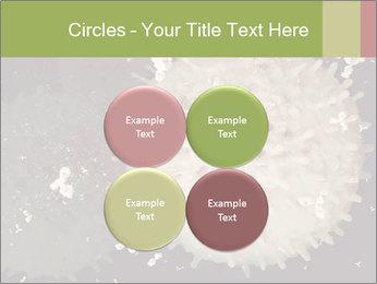 0000083543 PowerPoint Template - Slide 38