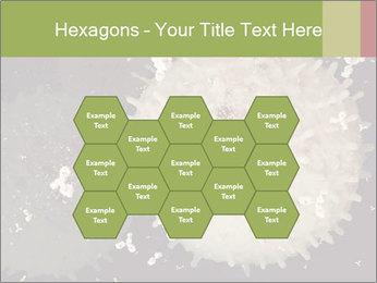 0000083543 PowerPoint Template - Slide 44