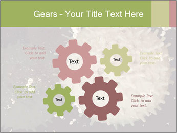 0000083543 PowerPoint Template - Slide 47