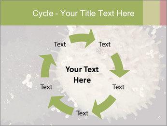 0000083543 PowerPoint Template - Slide 62