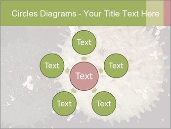 0000083543 PowerPoint Template - Slide 78