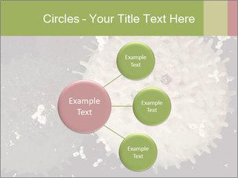 0000083543 PowerPoint Template - Slide 79
