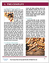 0000083546 Word Template - Page 3