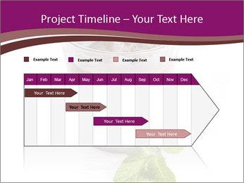 0000083547 PowerPoint Templates - Slide 25