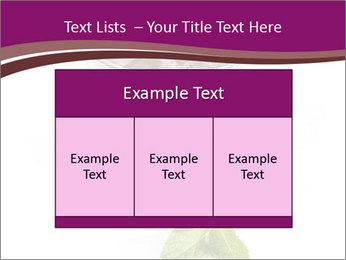 0000083547 PowerPoint Templates - Slide 59