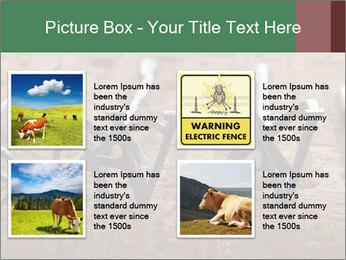 0000083551 PowerPoint Templates - Slide 14