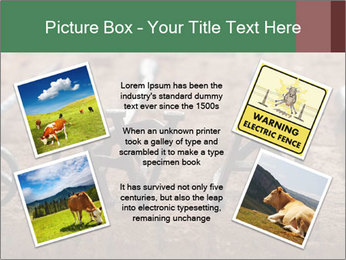 0000083551 PowerPoint Templates - Slide 24