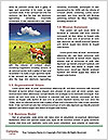 0000083551 Word Templates - Page 4
