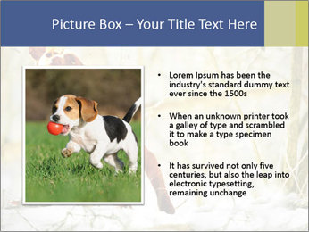 0000083557 PowerPoint Templates - Slide 13