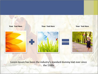 0000083557 PowerPoint Templates - Slide 22