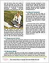 0000083561 Word Template - Page 4