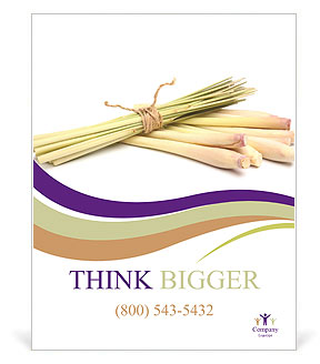 0000083570 Poster Template