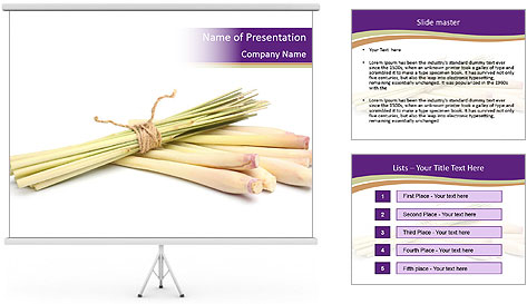 0000083570 PowerPoint Template