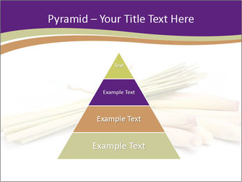 0000083570 PowerPoint Templates - Slide 30