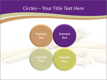 0000083570 PowerPoint Templates - Slide 38