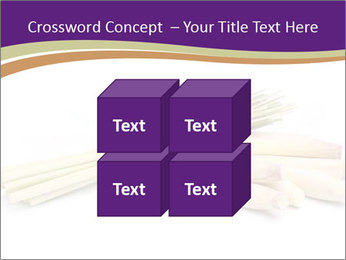 0000083570 PowerPoint Templates - Slide 39