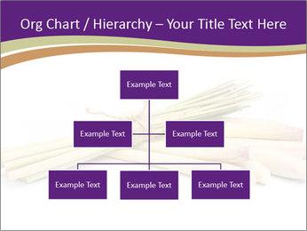 0000083570 PowerPoint Templates - Slide 66