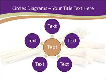 0000083570 PowerPoint Templates - Slide 78