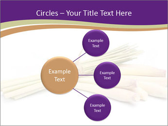 0000083570 PowerPoint Templates - Slide 79