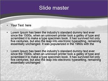 0000083583 PowerPoint Templates - Slide 2
