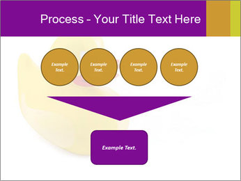 0000083586 PowerPoint Templates - Slide 93