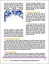 0000083586 Word Template - Page 4