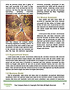 0000083596 Word Templates - Page 4