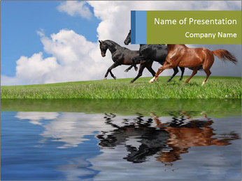 0000083599 PowerPoint Template - Slide 1
