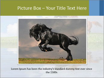 0000083599 PowerPoint Template - Slide 15
