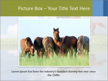 0000083599 PowerPoint Template - Slide 16