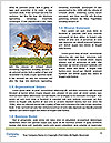 0000083599 Word Template - Page 4