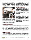 0000083600 Word Template - Page 4