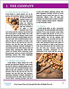0000083604 Word Template - Page 3