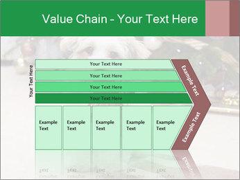 0000083605 PowerPoint Templates - Slide 27